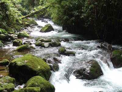 fresh river_400